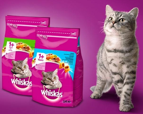 картинки кошачий корм в пятерочке сухой ингредиентами путь